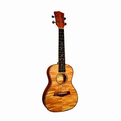 arrius 1500 ukulele